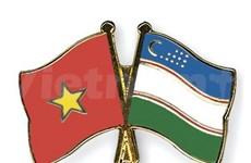 越南与乌兹别克斯坦的友好合作关系不断向前发展