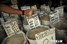 泰国出口商扩大大米销售