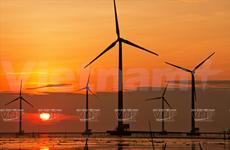 越南薄辽省的风电场