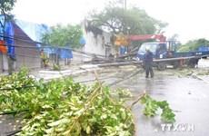 三号台风给越南北部各省市造成巨大损失