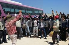 越南劳动者撤离利比亚疏散计划结束