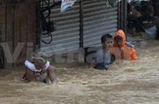 台风《凤凰》袭击菲律宾 致10人死亡7人受伤