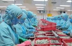 越南对智利进出口贸易首次出现顺差现象