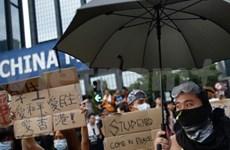 越南外交部劝告旅居香港越南人切勿接近示威区