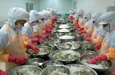 VASEP反对美国商务部对越南虾类产品征收反倾销税