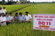 越南各地与日本茨城县加强农业领域合作