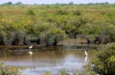 越南全球环境基金第六次增资对话会在河内召开