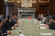 胡志明市高级代表团访问日本