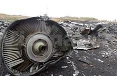 马航MH17客机事件:已完成3名越南遇难者遗体的识别工作