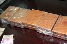 越南逮捕1名嫌疑人 缴获干大麻1.9公斤