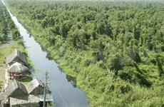 多种珍稀野生动物在越南幽冥下森林发现