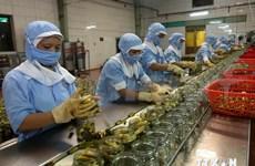 越南加强在埃及推介农林水产品
