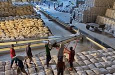 美国农业部:越南大米出口量有望达670万吨