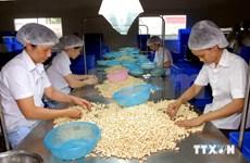 越南企业需抓住机遇顺利进军美国市场