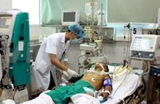 加大预防力度 坚决不让黑死病入侵越南