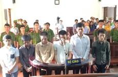 越南同奈省各工业区的不法分子受审