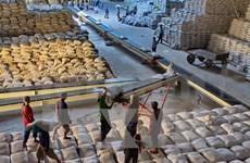 2014年越南九龙江三角洲地区大米出口量可达585万吨