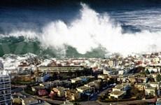 越南政府总理阮晋勇向印度洋海啸受灾各国表达深切慰问