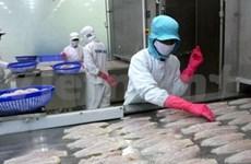 越南 Bianfishco 享受美国免进口税优惠