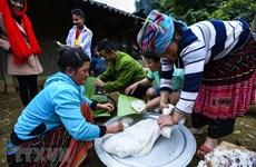 组图:西北地区蒙族同胞喜迎富有浓郁民族文化特色的闹比筹节