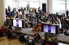 组图:内排国际机场对入境越南的旅客进行严格的检查