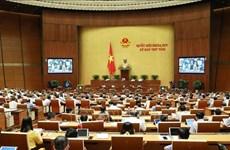 越南第十四届国会第八次会议:对干部、公务员与职员队伍建立和管理主张进行法制化