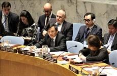 越南与联合国安理会:越南主持召开联合国安理会关于以色列和巴基斯坦局势公开会