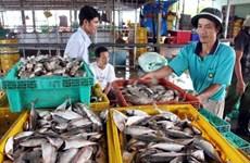 坚江省积极推进商品出口力度   力推出口贸易发展