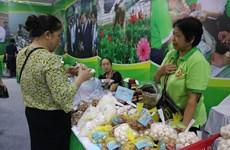 """河内市275种产品被公认为""""一乡一品""""产品"""