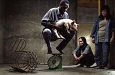 越南导演的电影作品在第71届柏林国际电影节获奖