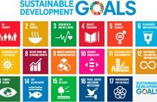 越南公布2020年国家可持续发展目标进展报告
