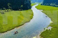 组图:观赏宁平省三谷绿稻田的美丽