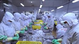 越南对以色列贸易顺差继续扩大
