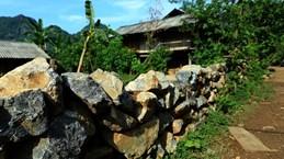 越南旅游:全力保留瑶族同胞特有的民族文化习俗(组图)