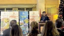 土耳其越南文化日活动举行 庆祝越土建交40周年