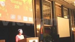 旅居海外越南人举行喜迎2019己亥猪年活动
