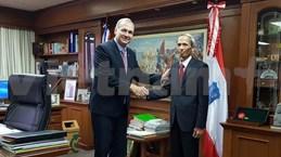 越南与巴拉圭促进合作关系