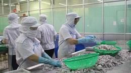越南驻巴基斯坦商务处建议企业在交易时保持谨慎