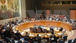瑞典驻联合国大使:越南将在联合国安理会发挥建设性作用