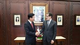 越共中央宣教部部长武文赏访问摩洛哥 开展系列会见活动