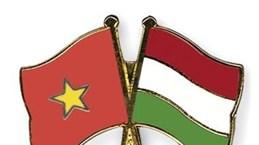 越南—匈牙利友好见面会在河内举行