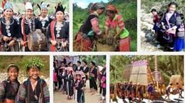 越南将于10月1日起对全国53个少数民族经济社会发展状况展开调查