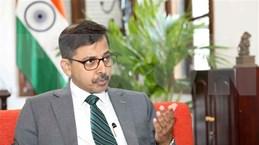 印度驻越大使:越南-印度合作关系在地区和国际事务中扮演着日益重要的作用