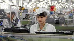 平福省招商引资项目成绩喜人  吸引224个FDI项目