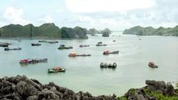 海防市吉婆岛吸引高端游客的眼球