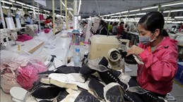 越南与以色列进出口商品结构互补性强