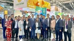 越南参加2019年德国科隆国际食品展览会