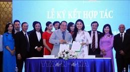胡志明市企业家积极同海外越南企业家携手合作 共同推进越南的发展