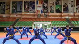 越武道在非洲得到大范围的普及