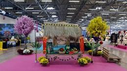 越南文化吸引意大利公众的关注